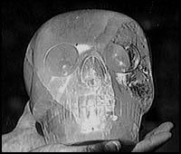 Le crâne de cristal du Texas ou  Max