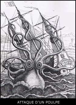 Cryptozoologie cryptozoology kraken cracken calamar colossal calamar géant marins légende mythe cryptide existence arthropode Scylla scandinave Un poulpe géant attaquant un navire